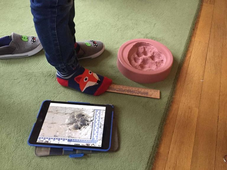 Wolfsthema  im Kindergarten ⓒ Zuba