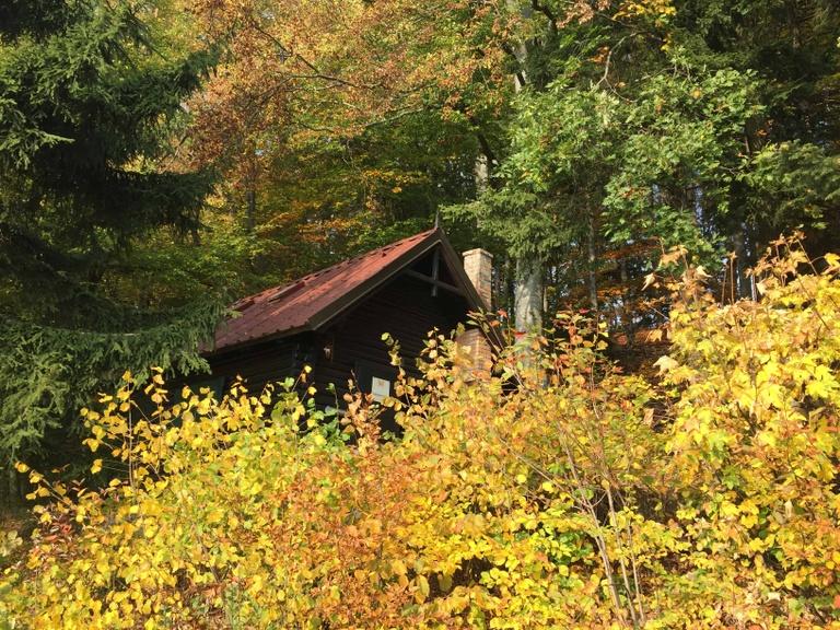 Waldpädagogik und Naturpädagogik im Naturpark Jauerling